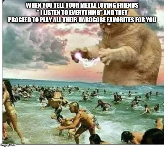 "WHEN YOU TELL YOUR METAL LOVING FRIENDS "" I LISTEN TO EVERYTHING"" AND THEY PROCEED TO PLAY ALL THEIR HARDCORE FAVORITES FOR YOU 