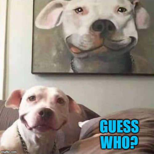 Now that's a dog lover... |  GUESS WHO? | image tagged in guess who,memes,dogs,funny,self portraits,animals | made w/ Imgflip meme maker