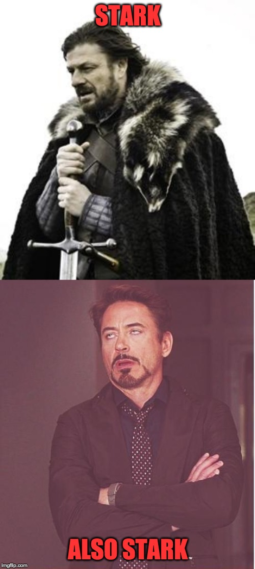 STARK ALSO STARK | image tagged in ned stark,memes,face you make robert downey jr | made w/ Imgflip meme maker