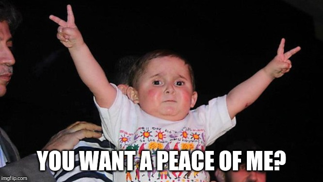 peace sign baby | YOU WANT A PEACE OF ME? | image tagged in peace sign baby | made w/ Imgflip meme maker