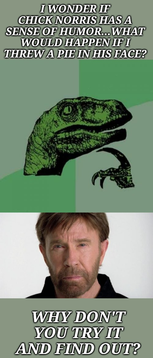 Naw, I'm good. | I WONDER IF CHICK NORRIS HAS A SENSE OF HUMOR...WHAT WOULD HAPPEN IF I THREW A PIE IN HIS FACE? WHY DON'T YOU TRY IT AND FIND OUT? | image tagged in memes,philosoraptor,chuck norris | made w/ Imgflip meme maker