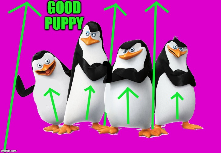 uv | GOOD PUPPY | image tagged in uv | made w/ Imgflip meme maker
