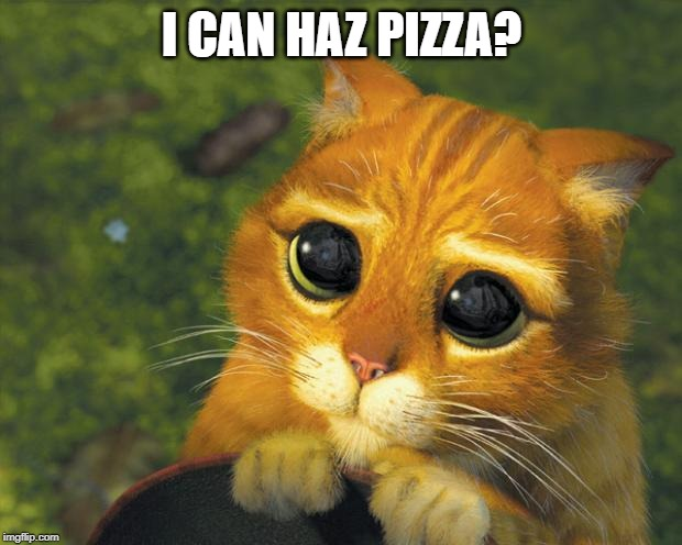 puss in boots | I CAN HAZ PIZZA? | image tagged in puss in boots | made w/ Imgflip meme maker