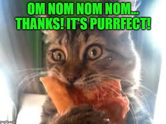 OM NOM NOM NOM... THANKS! IT'S PURRFECT! | made w/ Imgflip meme maker