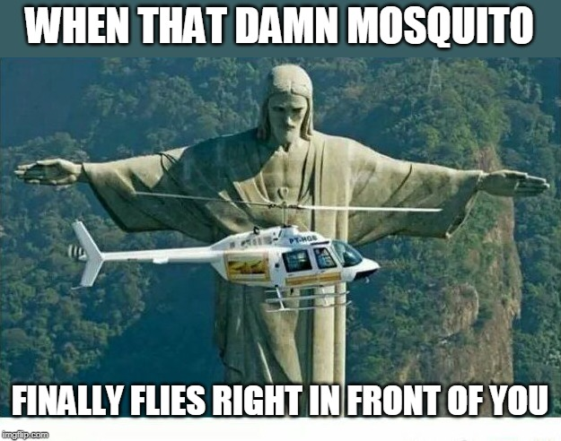 WHEN THAT DAMN MOSQUITO FINALLY FLIES RIGHT IN FRONT OF YOU | image tagged in memes,mosquito | made w/ Imgflip meme maker