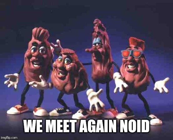 California Raisins | WE MEET AGAIN NOID | image tagged in california raisins | made w/ Imgflip meme maker