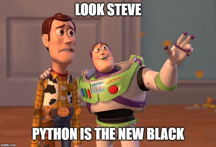 LOOK STEVE | LOOK STEVE PYTHON IS THE NEW BLACK | image tagged in memes,x x everywhere,python,c,programming | made w/ Imgflip meme maker