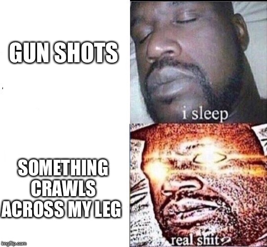 I Sleep | GUN SHOTS SOMETHING CRAWLS ACROSS MY LEG | image tagged in i sleep,sleeping shaq / real shit,i sleep real shit,real shit | made w/ Imgflip meme maker