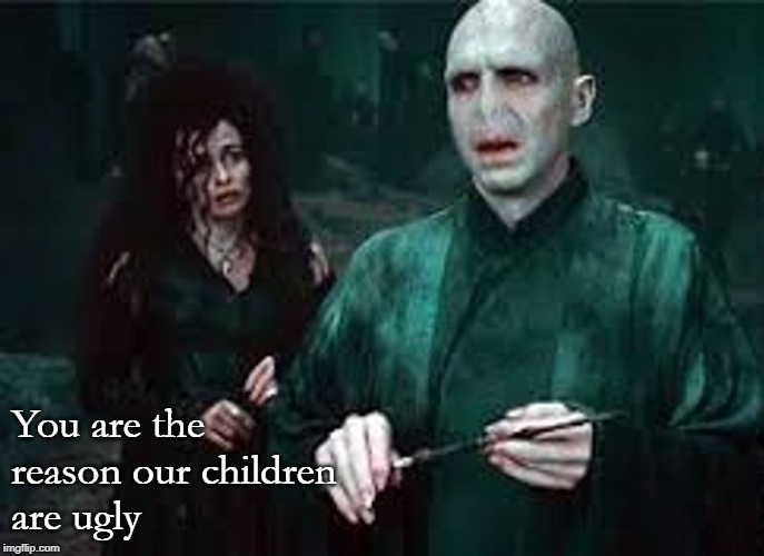 You are the reason our children are ugly | You are the reason our children are ugly | image tagged in harry potter | made w/ Imgflip meme maker