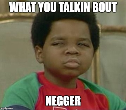 What you talking about Willis | WHAT YOU TALKIN BOUT NEGGER | image tagged in what you talking about willis | made w/ Imgflip meme maker