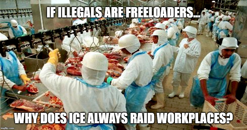Illegals | IF ILLEGALS ARE FREELOADERS... WHY DOES ICE ALWAYS RAID WORKPLACES? | image tagged in illegal immigration | made w/ Imgflip meme maker