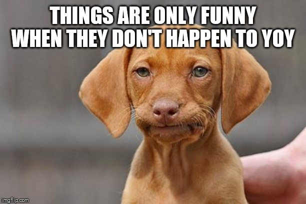 Dissapointed puppy | THINGS ARE ONLY FUNNY WHEN THEY DON'T HAPPEN TO YOY | image tagged in dissapointed puppy | made w/ Imgflip meme maker