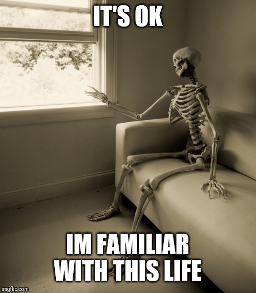 Lonely Skeleton | IT'S OK IM FAMILIAR WITH THIS LIFE | image tagged in lonely skeleton | made w/ Imgflip meme maker
