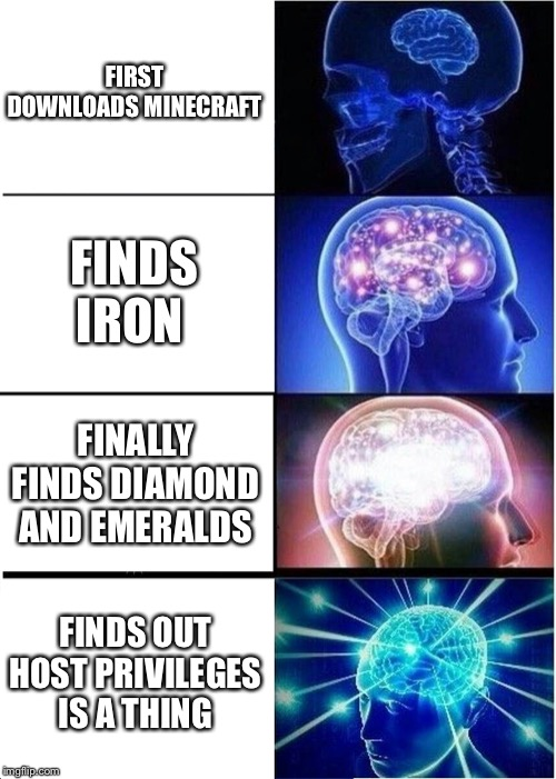 Expanding Brain |  FIRST DOWNLOADS MINECRAFT; FINDS IRON; FINALLY FINDS DIAMOND AND EMERALDS; FINDS OUT HOST PRIVILEGES IS A THING | image tagged in memes,expanding brain | made w/ Imgflip meme maker