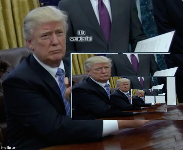 Trump Bill Signing Meme | It's wonderful | image tagged in memes,trump bill signing | made w/ Imgflip meme maker