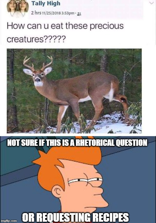 NOT SURE IF THIS IS A RHETORICAL QUESTION OR REQUESTING RECIPES | image tagged in frye tired meme | made w/ Imgflip meme maker