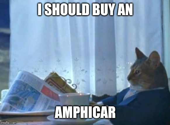 I Should Buy A Boat Cat Meme | I SHOULD BUY AN AMPHICAR | image tagged in memes,i should buy a boat cat | made w/ Imgflip meme maker