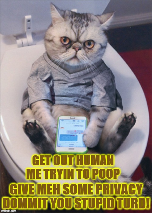 GET OUT HUMAN ME TRYIN TO POOP GIVE MEH SOME PRIVACY DOMMIT YOU STUPID TURD! | image tagged in me demands | made w/ Imgflip meme maker