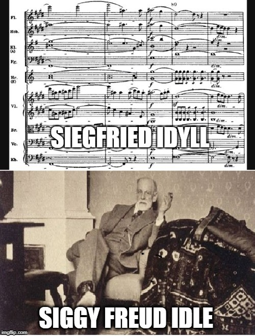 image tagged in sigmund freud,wagner,german culture,german | made w/ Imgflip meme maker