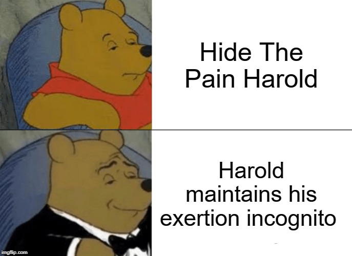 Harold Meets Winnie | Hide The Pain Harold Harold maintains his exertion incognito | image tagged in memes,tuxedo winnie the pooh,funny,hide the pain harold,words,cartoon | made w/ Imgflip meme maker