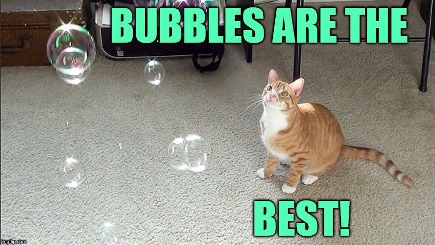 BUBBLES ARE THE BEST! | made w/ Imgflip meme maker