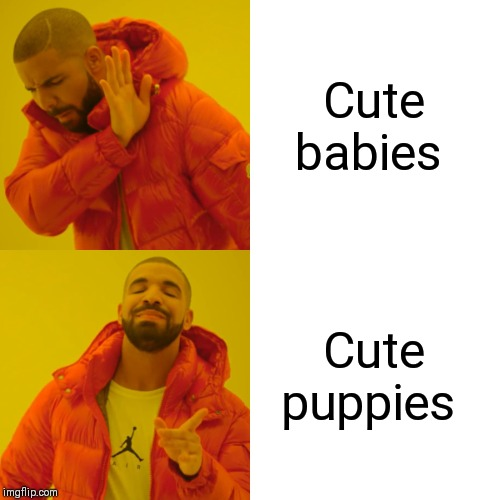 Drake Hotline Bling Meme | Cute babies Cute puppies | image tagged in memes,drake hotline bling | made w/ Imgflip meme maker