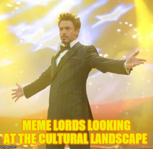 Robert Downey Jr Iron Man | MEME LORDS LOOKING AT THE CULTURAL LANDSCAPE | image tagged in robert downey jr iron man | made w/ Imgflip meme maker
