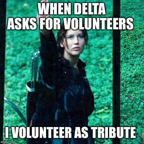 Hunger games | WHEN DELTA ASKS FOR VOLUNTEERS I VOLUNTEER AS TRIBUTE | image tagged in hunger games | made w/ Imgflip meme maker