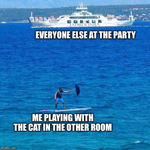Cat Daddy | EVERYONE ELSE AT THE PARTY ME PLAYING WITH THE CAT IN THE OTHER ROOM | image tagged in cats,cat,partying,kitty,kitten,kittens | made w/ Imgflip meme maker