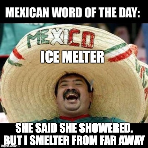 Mexican Word of the Day (LARGE) | ICE MELTER SHE SAID SHE SHOWERED. BUT I SMELTER FROM FAR AWAY | image tagged in mexican word of the day large,shower | made w/ Imgflip meme maker