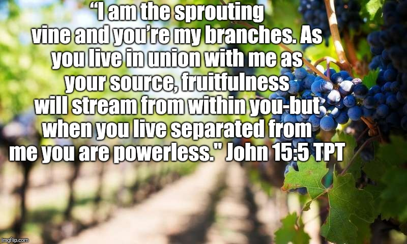 """I am the sprouting vine and you're my branches. As you live in union with me as your source, fruitfulness will stream from within you-but w 