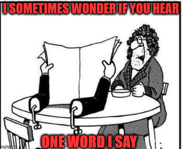 Of Course Dear | I SOMETIMES WONDER IF YOU HEAR ONE WORD I SAY | image tagged in nagging wife,missing,husband | made w/ Imgflip meme maker