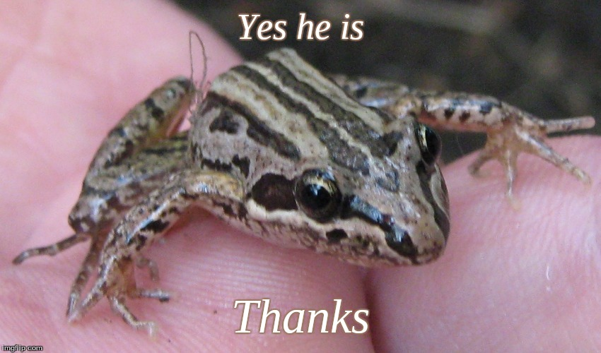 Yes he is Thanks | made w/ Imgflip meme maker