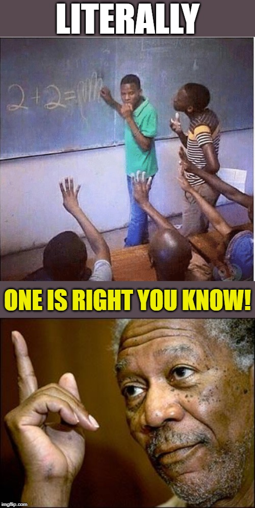 Sum might say! | LITERALLY ONE IS RIGHT YOU KNOW! | image tagged in this morgan freeman,memes,higher education,africa,fun,well yes but actually no | made w/ Imgflip meme maker
