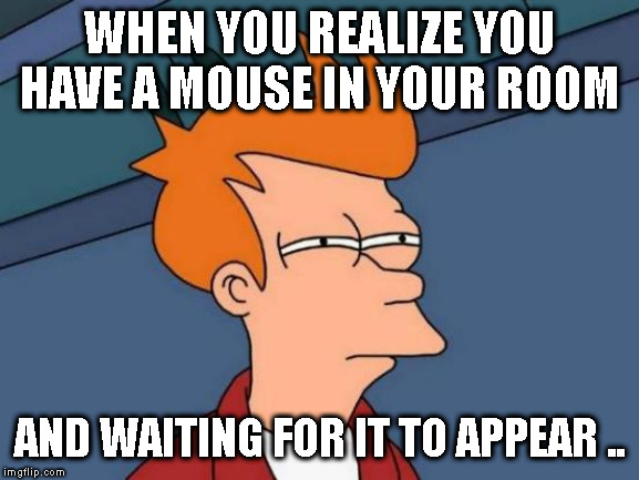 Futurama Fry Meme | WHEN YOU REALIZE YOU HAVE A MOUSE IN YOUR ROOM AND WAITING FOR IT TO APPEAR .. | image tagged in memes,futurama fry | made w/ Imgflip meme maker