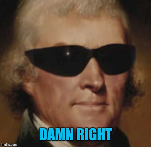 Cool Thomas Jefferson  | DAMN RIGHT | image tagged in cool thomas jefferson | made w/ Imgflip meme maker