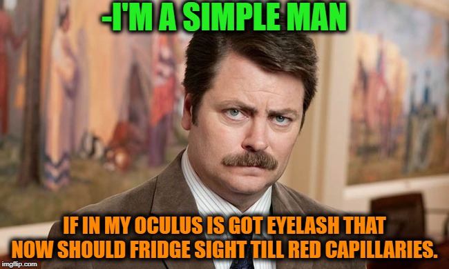 -I hate flies at evening forest walking. | -I'M A SIMPLE MAN IF IN MY OCULUS IS GOT EYELASH THAT NOW SHOULD FRIDGE SIGHT TILL RED CAPILLARIES. | image tagged in i'm a simple man,flies,simple,eyes,red eyes,vision | made w/ Imgflip meme maker