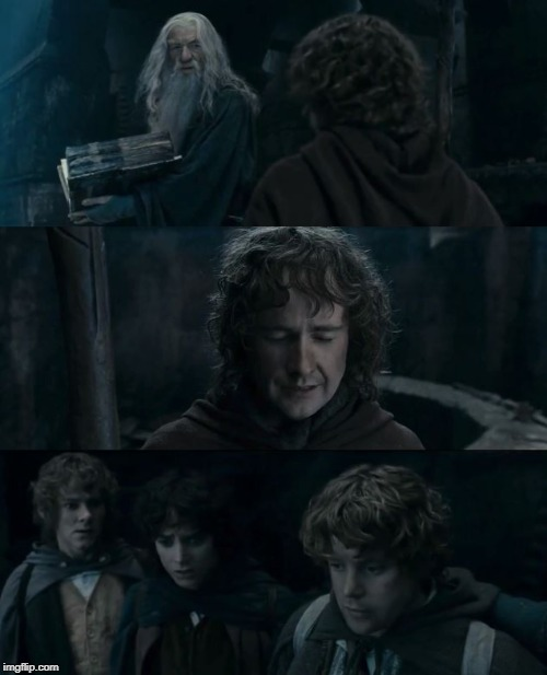 Pippin Messed Up | image tagged in lord of the rings,lotr,hobbit,messed up | made w/ Imgflip meme maker