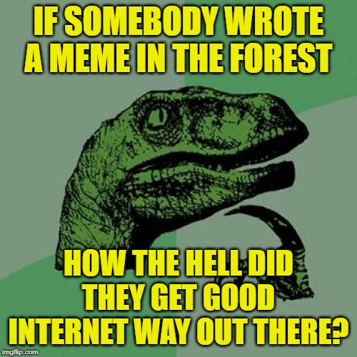 Would anybody see it? | IF SOMEBODY WROTE A MEME IN THE FOREST HOW THE HELL DID THEY GET GOOD INTERNET WAY OUT THERE? | image tagged in memes,philosoraptor,forest,internet | made w/ Imgflip meme maker