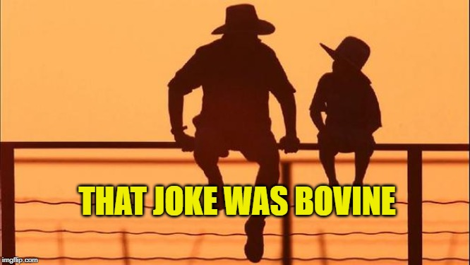 Cowboy father and son | THAT JOKE WAS BOVINE | image tagged in cowboy father and son | made w/ Imgflip meme maker