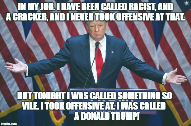 Donald Trump |  IN MY JOB. I HAVE BEEN CALLED RACIST, AND A CRACKER, AND I NEVER TOOK OFFENSIVE AT THAT. BUT TONIGHT I WAS CALLED SOMETHING SO           VILE. I TOOK OFFENSIVE AT. I WAS CALLED                          A DONALD TRUMP! | image tagged in donald trump | made w/ Imgflip meme maker