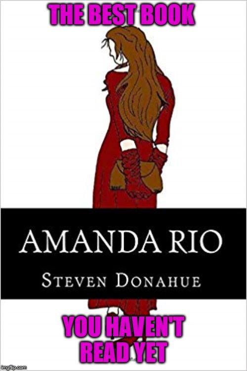Amanda Rio |  THE BEST BOOK; YOU HAVEN'T READ YET | image tagged in domestic violence,book,women's fiction | made w/ Imgflip meme maker