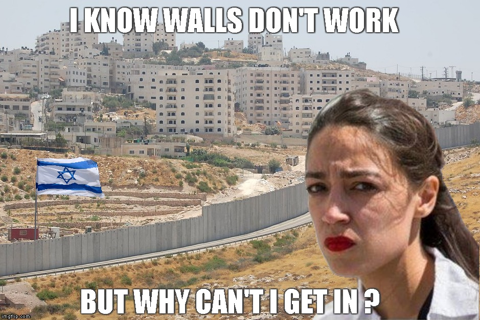 Travel Ban | I KNOW WALLS DON'T WORK BUT WHY CAN'T I GET IN ? | image tagged in memes,aoc,squad,israel,travel ban,denied | made w/ Imgflip meme maker