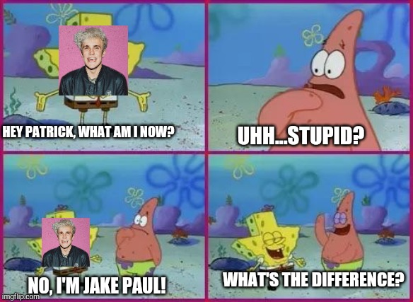 Spongebob What's the Difference? | HEY PATRICK, WHAT AM I NOW? UHH...STUPID? NO, I'M JAKE PAUL! WHAT'S THE DIFFERENCE? | image tagged in spongebob,jake paul | made w/ Imgflip meme maker