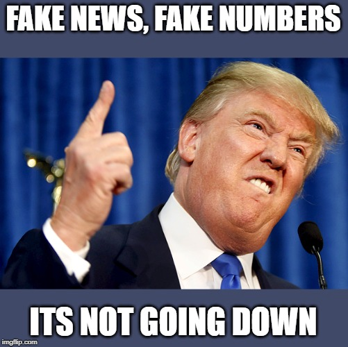 Donald Trump | FAKE NEWS, FAKE NUMBERS ITS NOT GOING DOWN | image tagged in donald trump | made w/ Imgflip meme maker