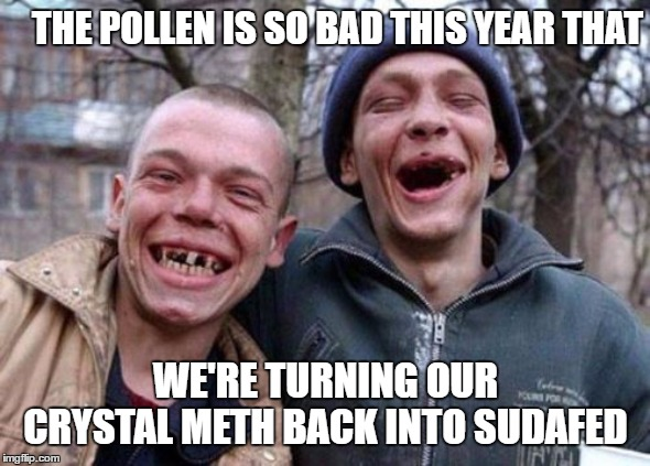 Ugly Twins |  THE POLLEN IS SO BAD THIS YEAR THAT; WE'RE TURNING OUR CRYSTAL METH BACK INTO SUDAFED | image tagged in memes,ugly twins,random,drug addiction,pollen,meth | made w/ Imgflip meme maker