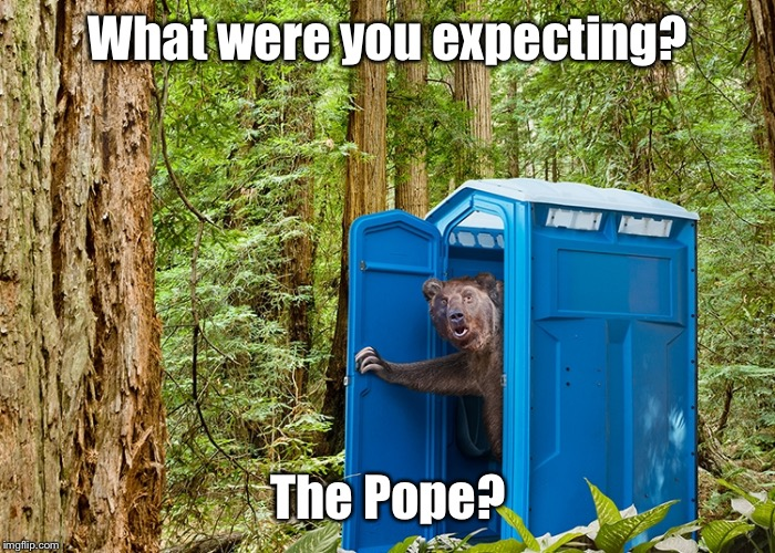 Are bears Catholic? | What were you expecting? The Pope? | image tagged in porta potty,bear,woods,pope,funny memes,drsarcasm | made w/ Imgflip meme maker