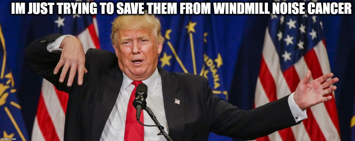 Trump limp | IM JUST TRYING TO SAVE THEM FROM WINDMILL NOISE CANCER | image tagged in trump limp | made w/ Imgflip meme maker