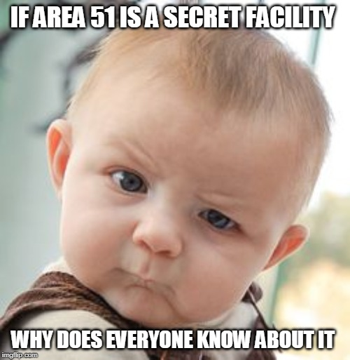 Skeptical Baby | IF AREA 51 IS A SECRET FACILITY WHY DOES EVERYONE KNOW ABOUT IT | image tagged in memes,skeptical baby | made w/ Imgflip meme maker