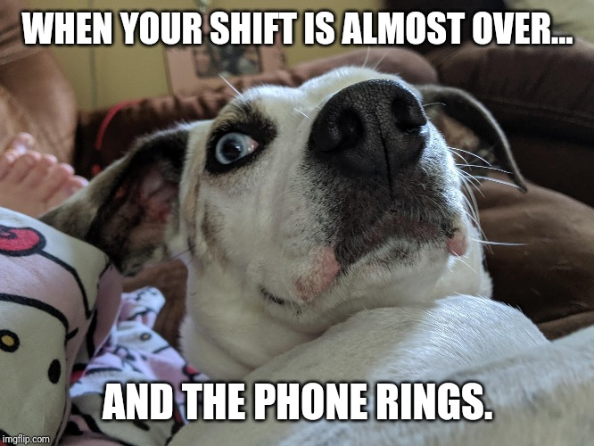 WHEN YOUR SHIFT IS ALMOST OVER... AND THE PHONE RINGS. | image tagged in work | made w/ Imgflip meme maker
